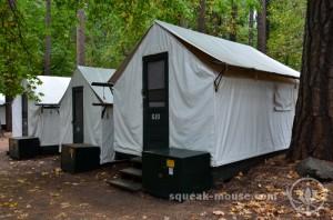 At the Campsite, Yosemite, United States